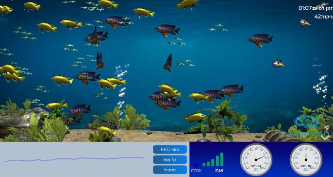 דגים באוקיינוס